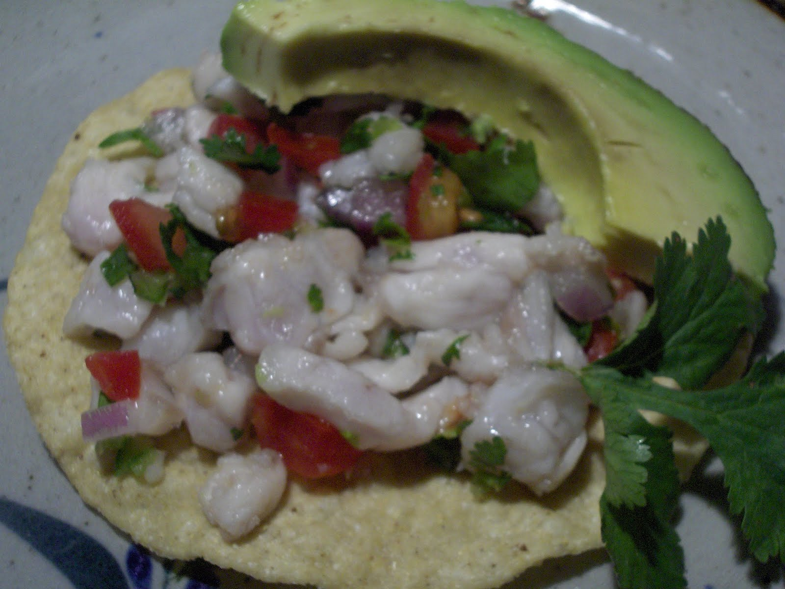 Ceviche in Mexico – Cooking in Mexico