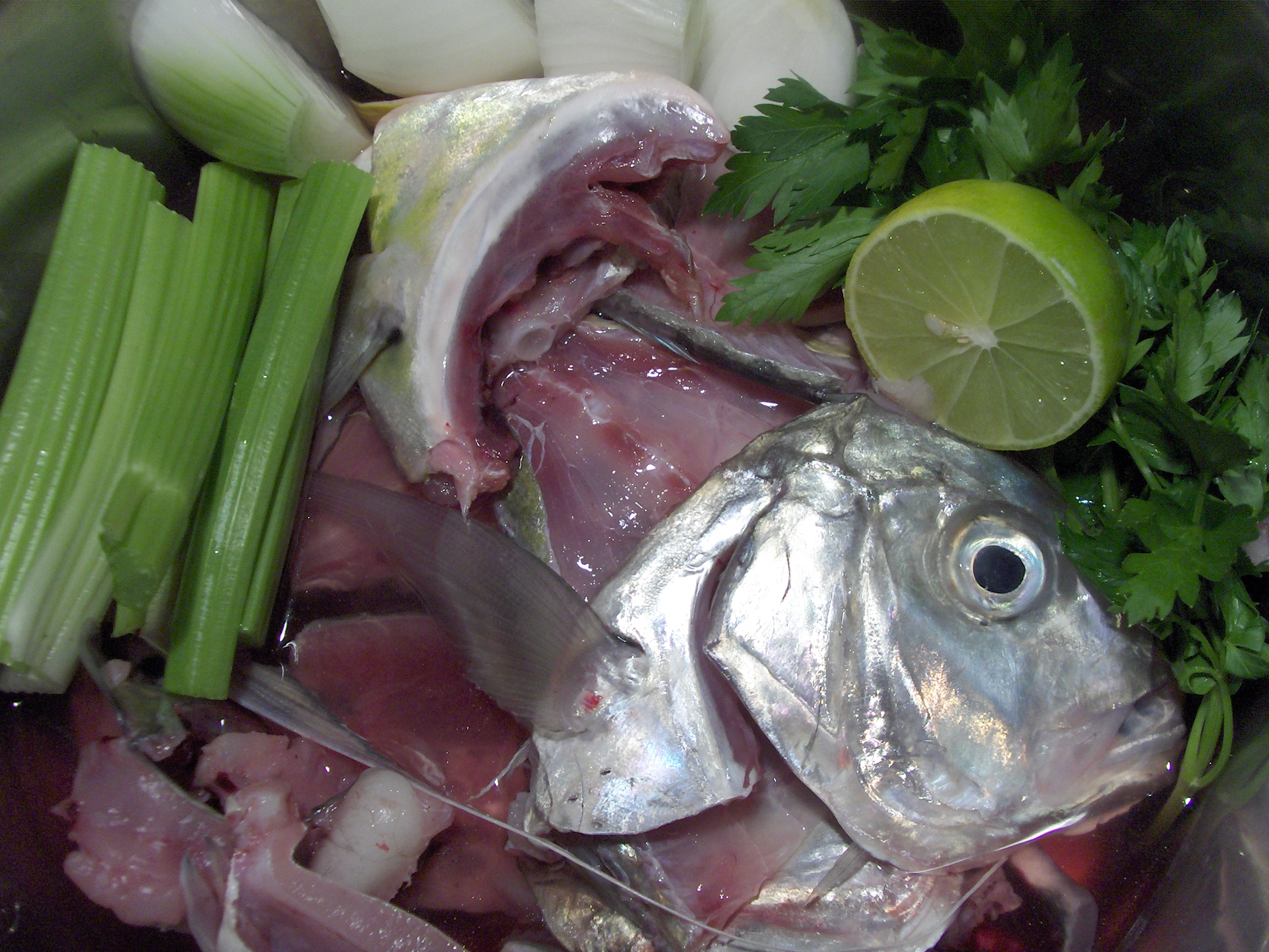 Fish Stock – Cooking in Mexico