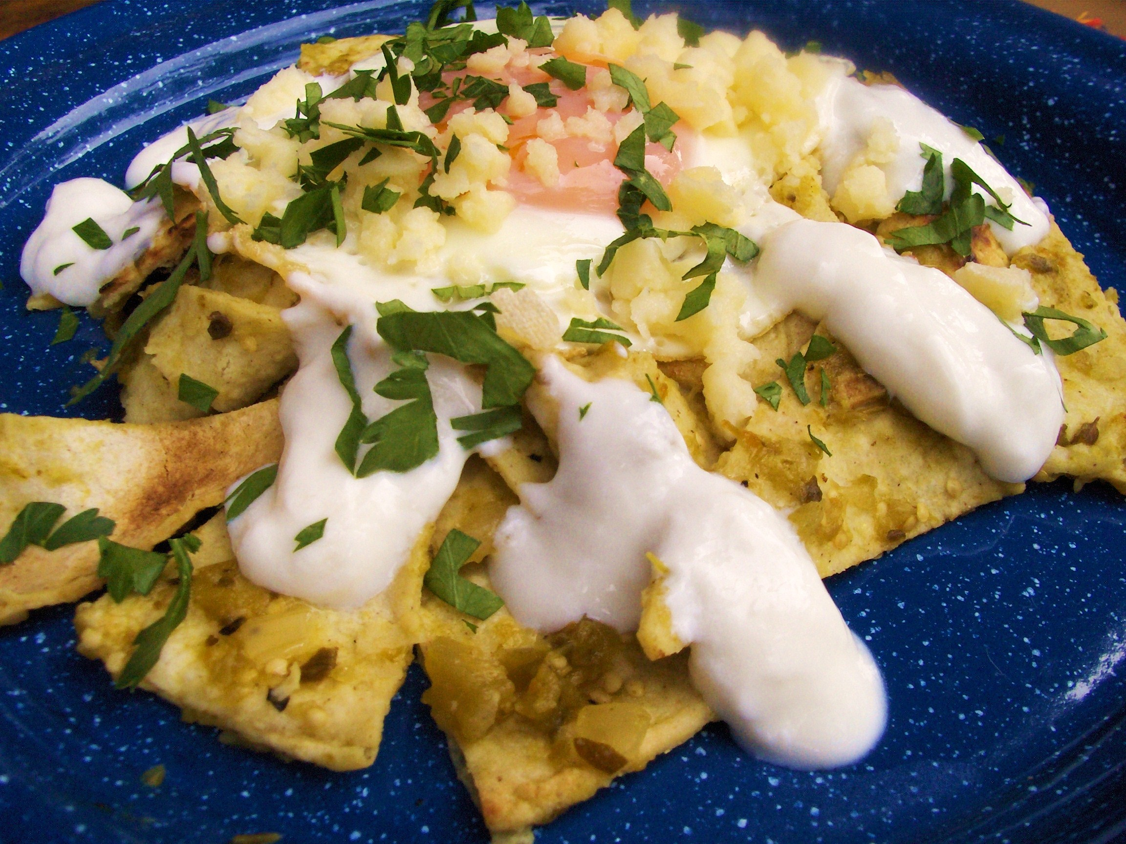 Chilaquiles — Tortillas and Eggs with Salsa Verde – Cooking in ...