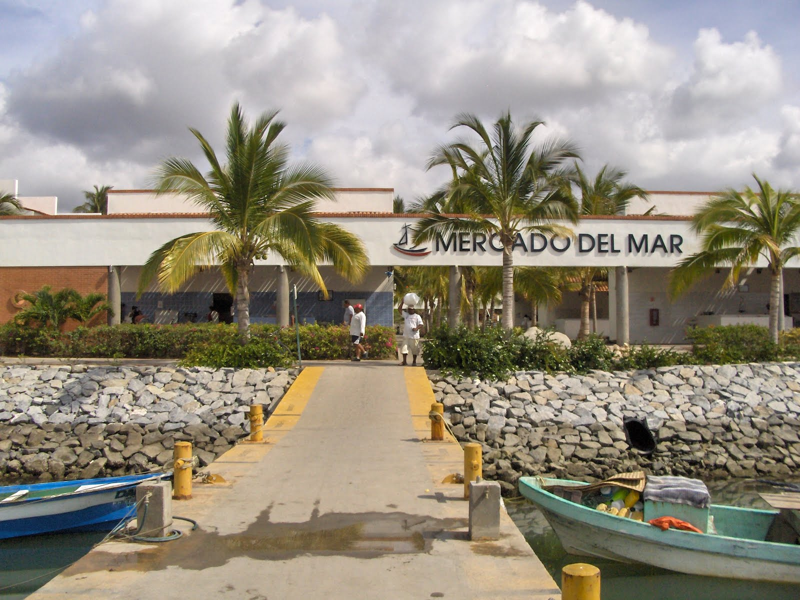 A guided tour of the la cruz fish market with tips for for La fish market