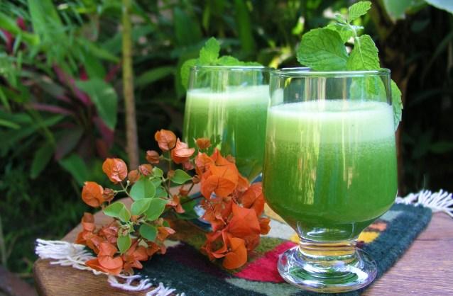 Licuado de Nopal-- Cactus in a Glass